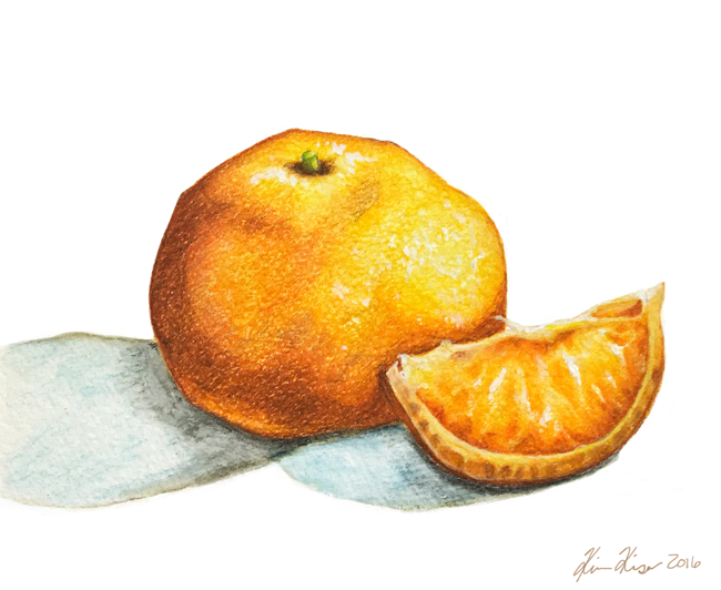 oranges - colored pencil and gouche